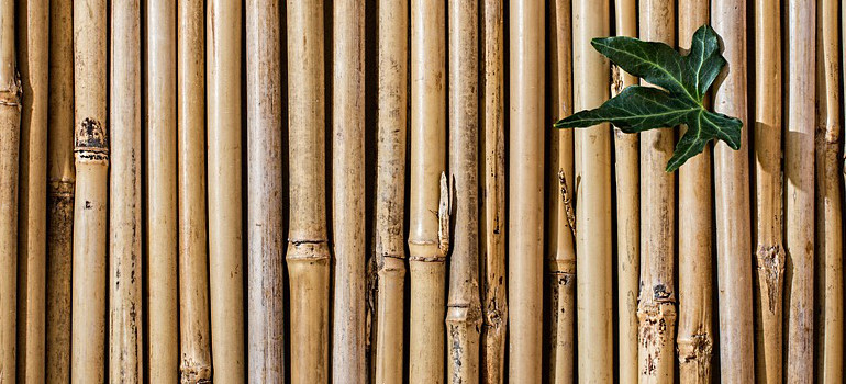 how to incorporate bamboo into your home