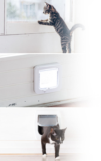 Reliable cat flap fitting service in London